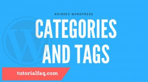 Noindex Wordpress Tags and Categories